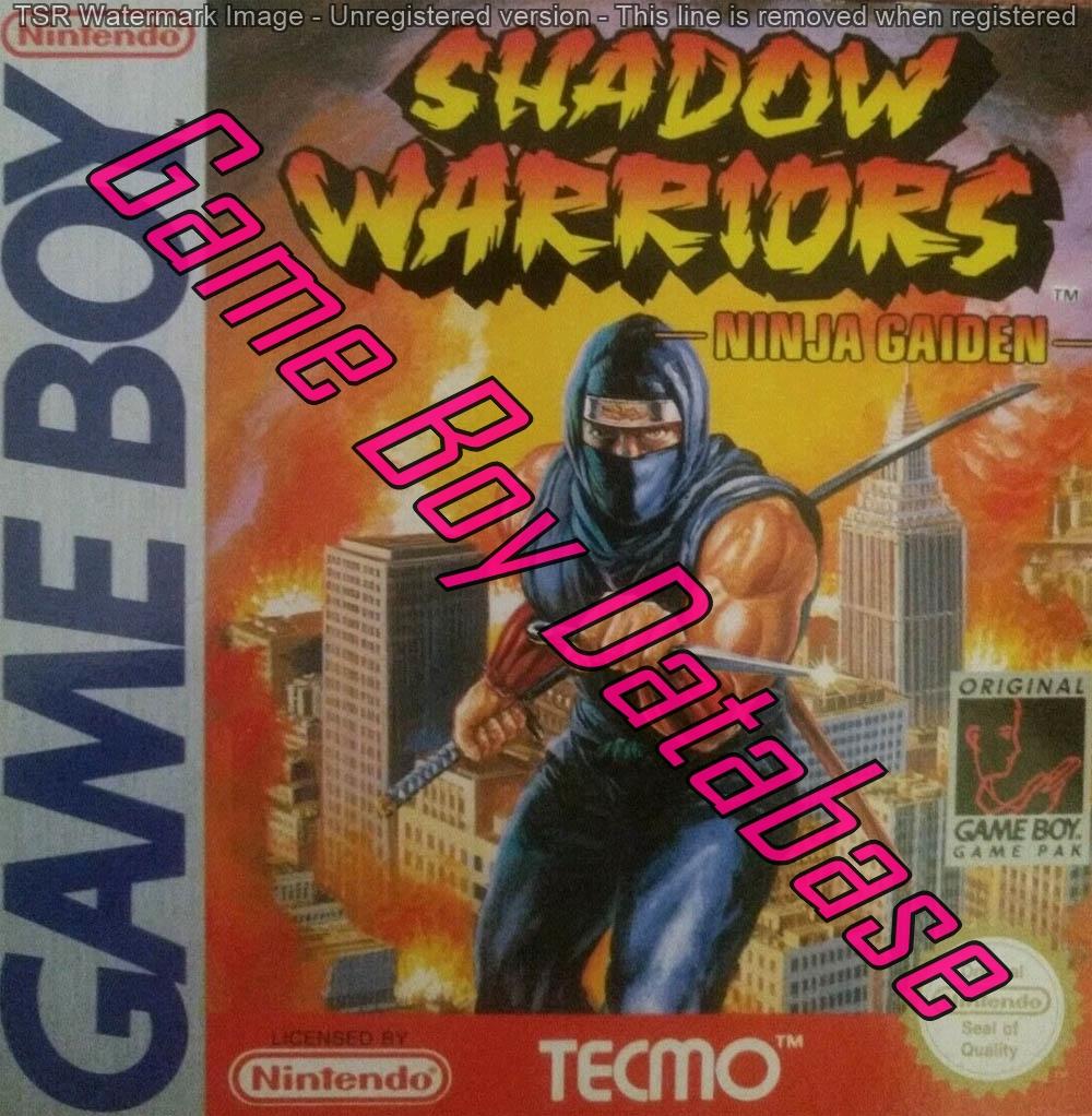 Dmg Ng Esp Shadow Warriors Ninja Gaiden